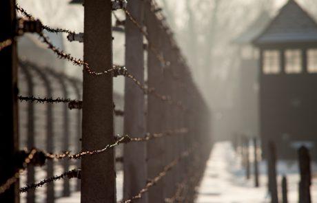 """""""במחנה אושוויץ ראיתי את זיו השכינה"""""""